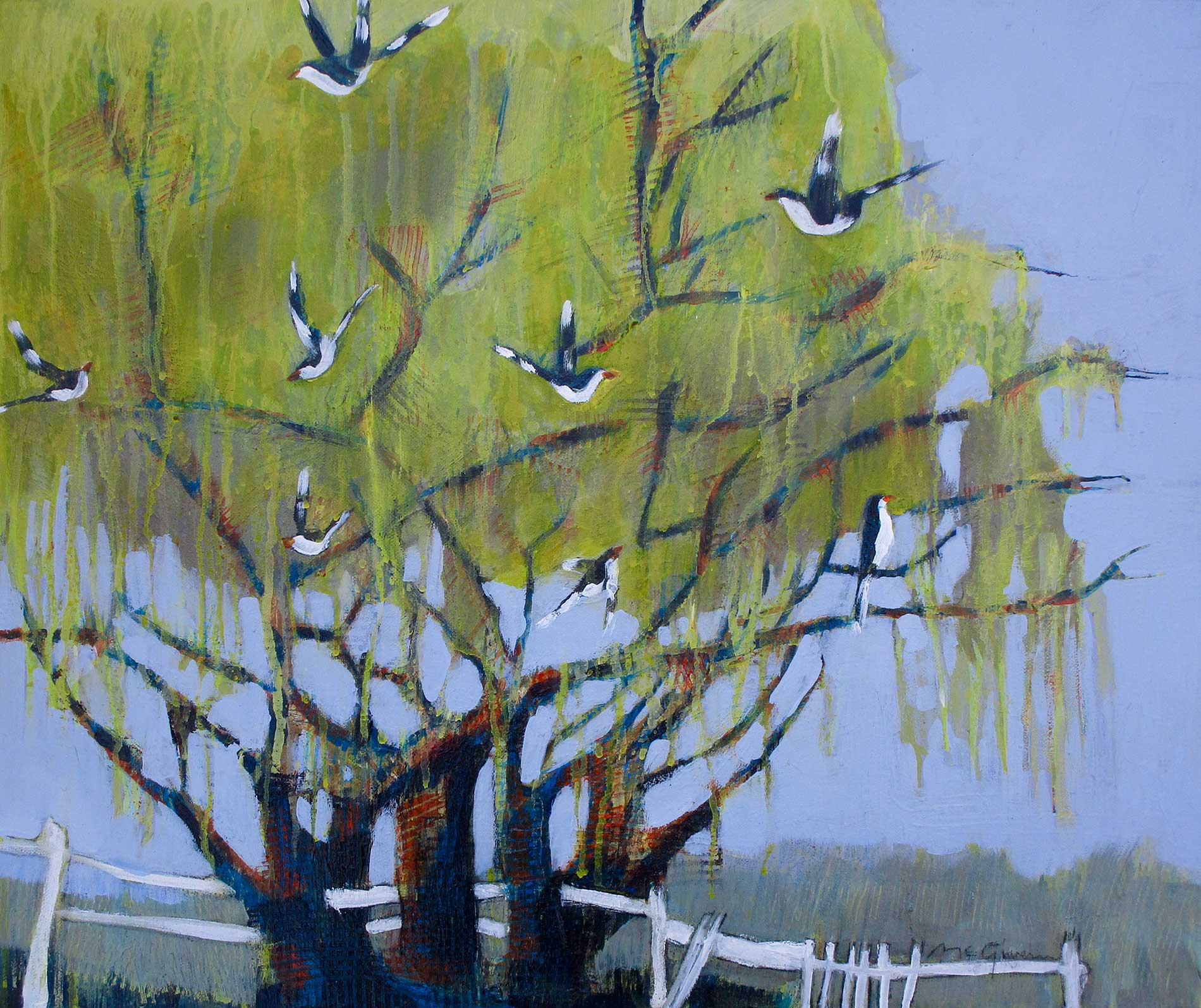 The Magpie Willow